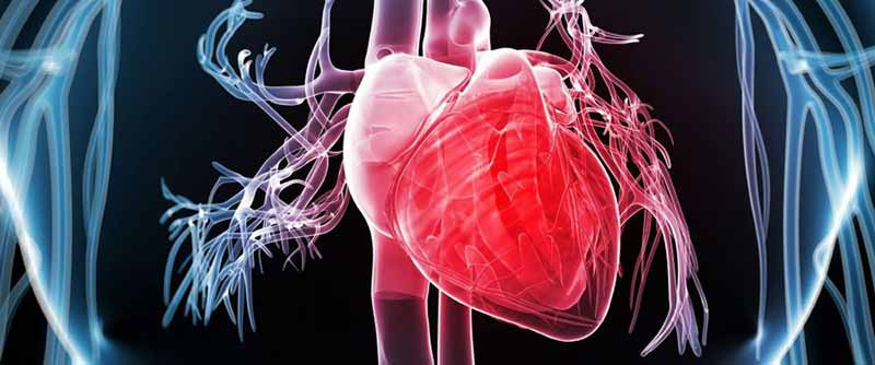 intervento al cuore senza bisturi