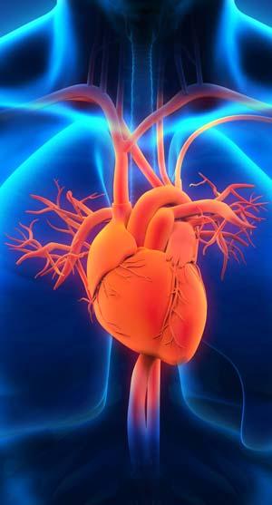 malattie cardiache
